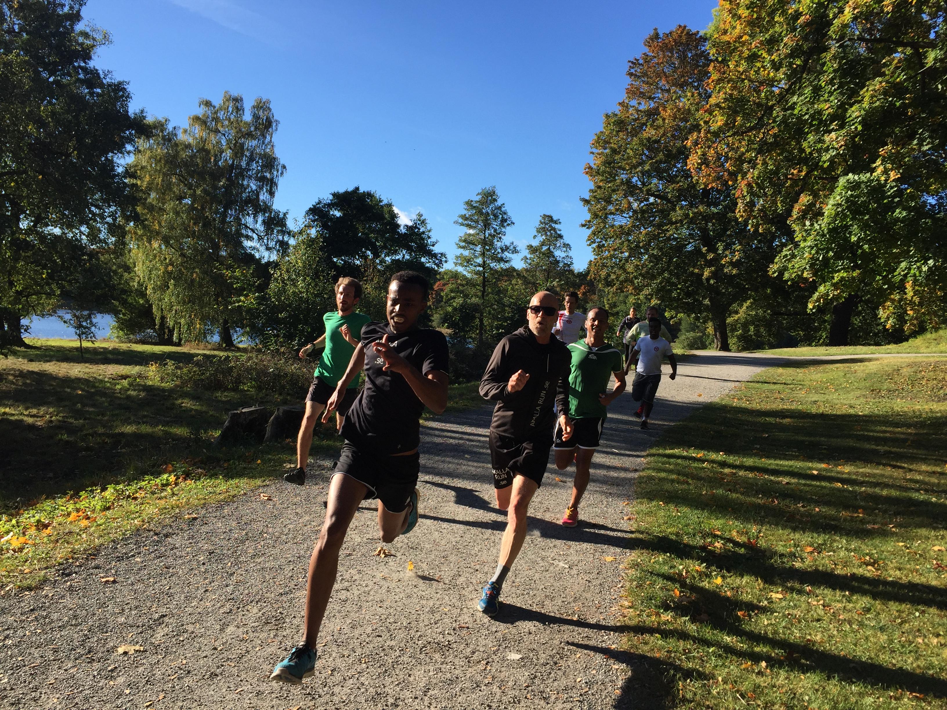Park Run i Haga